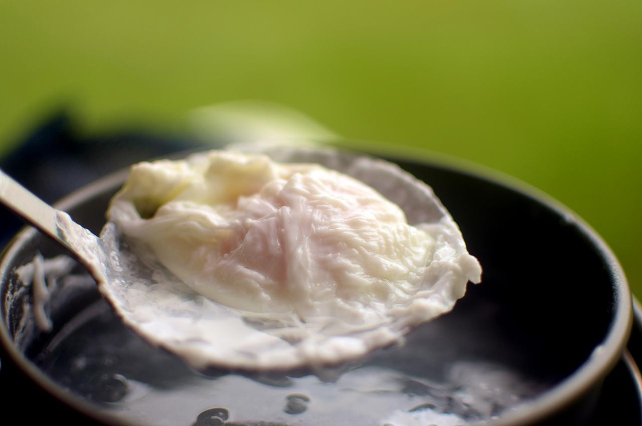 numa_egg07